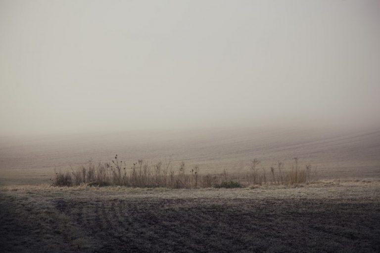 minimal landacpe misty fog