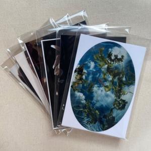 Royal Photographic Society art cards